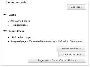 wp-super-cache2.jpg